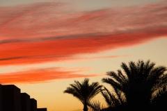 Egypt,January2019-3