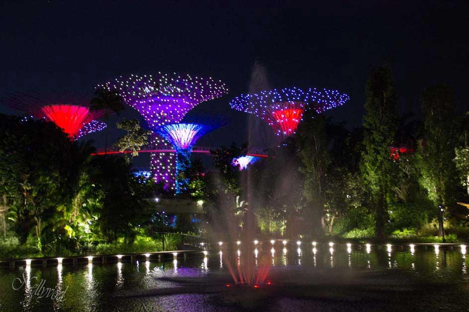 Singapure-Botanic-2