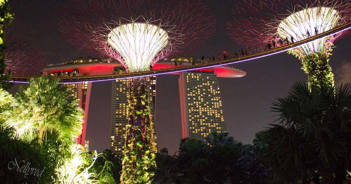 Singapure-Botanic-4