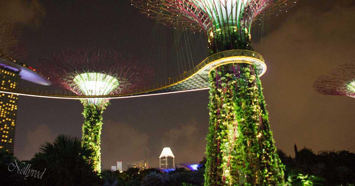 Singapure-Botanic-5