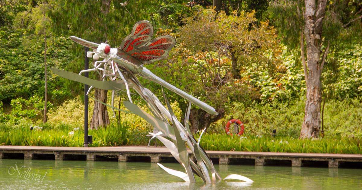 Singapure-Botanic-8-1