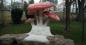 Гъбки червенушки