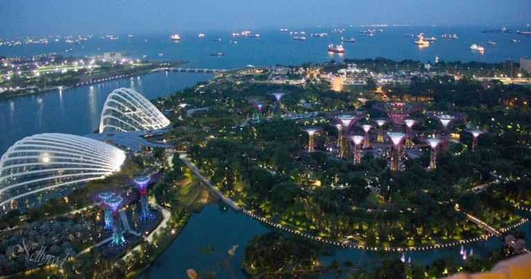 Garden of Marina Bay