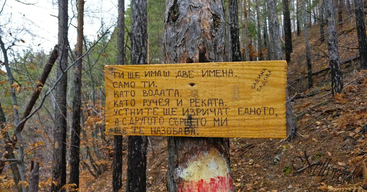 Пътеката на ардинската поезия в Родопите