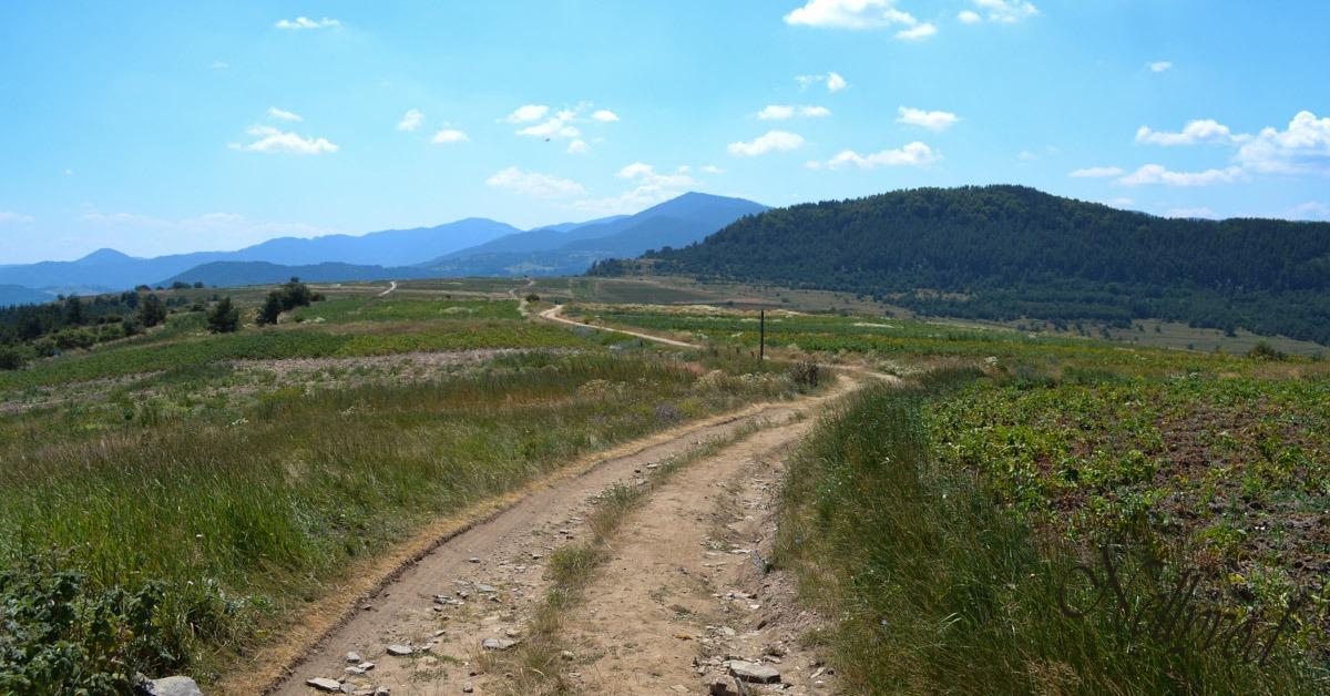 Пътят в селото, осеян с картофи