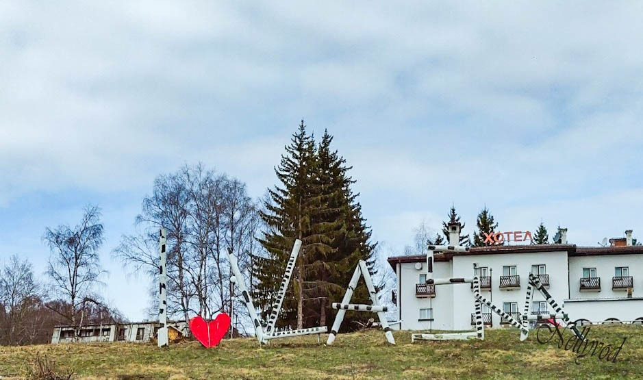 село Власина